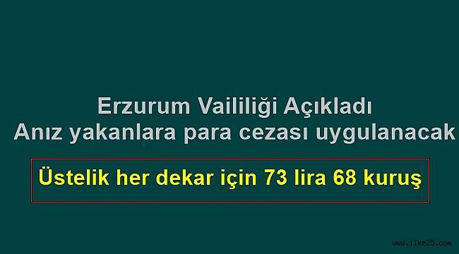 Erzurum'da Anız yakanlara para cezası uygulanacak