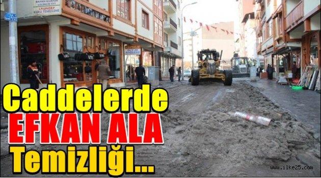 Caddelerde Efkan Ala temizliği