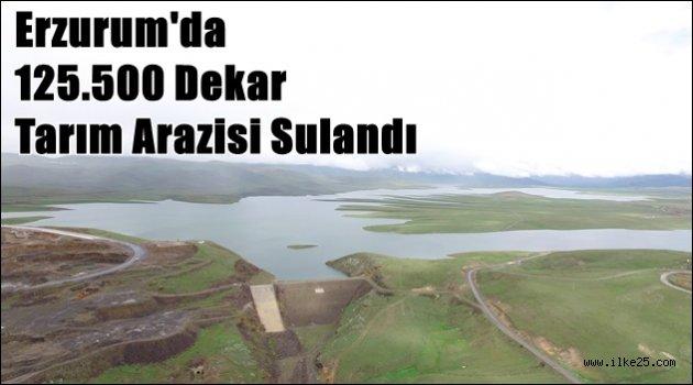 Erzurum'da 125.500 Dekar Tarım Arazisi  Sulandı
