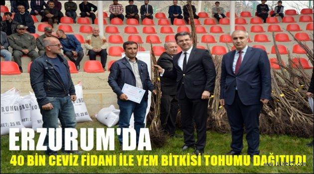 Erzurum'da 40 Bin Ceviz Fidanı ile Yem Bitkisi Tohumu Dağıtıldı
