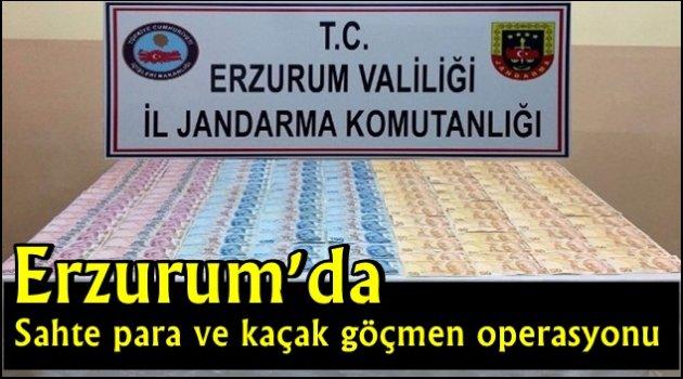 Erzurum'da sahte para ve kaçak göçmen operasyonu