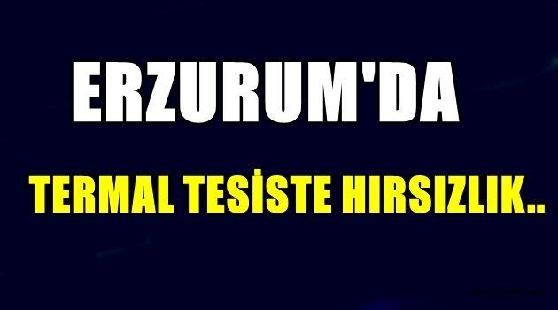 Erzurum'da Termal Tesiste Hırsızlık