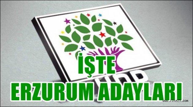 İşte HDP'nin Erzurum Adayları