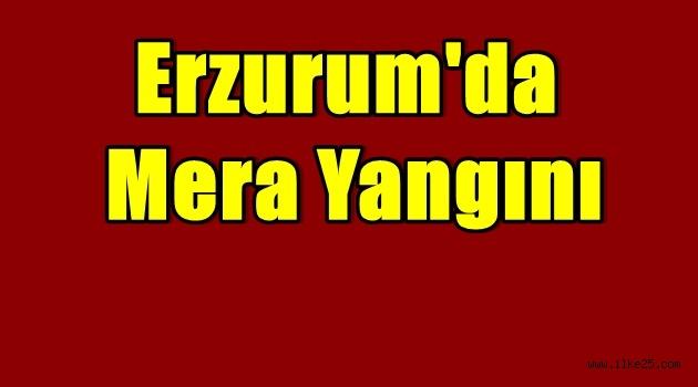 Erzurum'da Mera Yangını