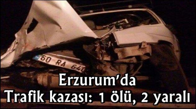 Erzurum'da trafik kazası: 1 ölü, 2 yaralı