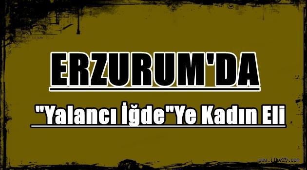 Erzurum'da 'Yalancı İğde'Ye Kadın Eli