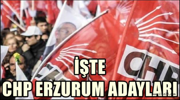 İşte CHP Erzurum Adayları