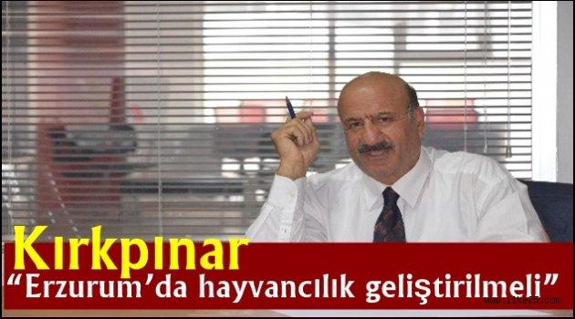 """Kırkpınar """"Erzurum'da hayvancılık geliştirilmeli"""""""