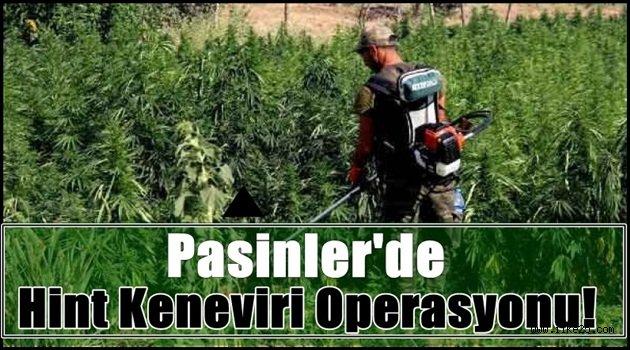 Pasinler'de Hint Keneviri Operasyonu!!