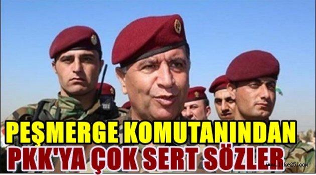 Peşmerge Komutanından PKK'ya Sert  Sözler