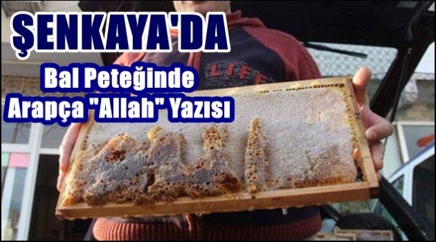 """Şenkaya'da Bal Peteğinde Arapça """"Allah"""" Yazısı"""