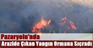 Pazaryolu'nda Arazide Çıkan Yangın Ormana Sıçradı