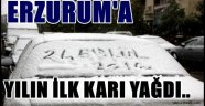 ERZURUM'A YILIN İLK KARI YAĞDI