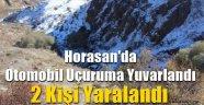 Horasan'da Otomobil Uçuruma Yuvarlandı: 2 Yaralı
