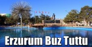Erzurum Buz Tuttu