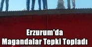 Erzurum'da Magandalar Tepki Topladı