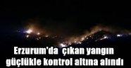 Erzurum'da ormanda çıkan yangın güçlükle kontrol altına alındı