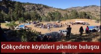 Gökçedere köylüleri piknikte buluştu