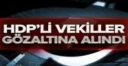 HDP'li İki Vekil Gözaltına Alındı